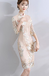 Champagne Embroidered Qipao / Cheongsam Dress with Half Sleeve