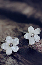 Tiny Shell White Flower Stud Earring