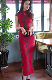 Lace Ankle-length Modern Qipao / Cheongsam Dress with Split